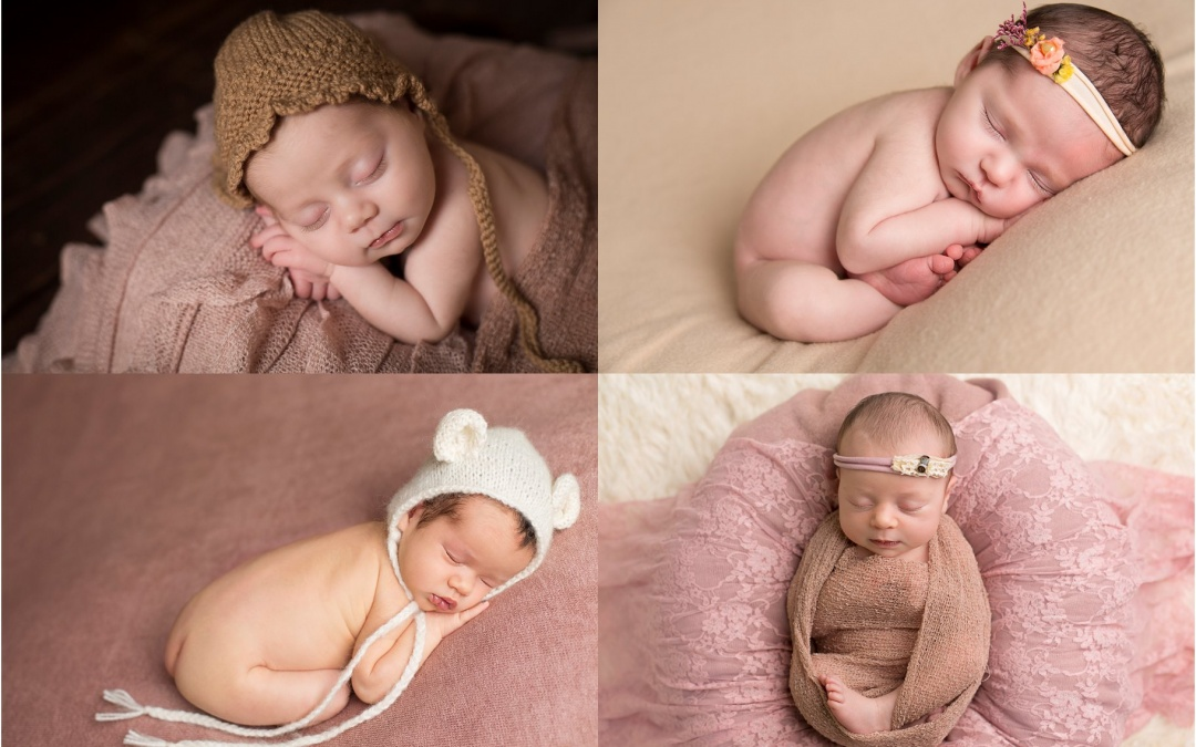 I'm a PRO Member of BANPAS – Newborn and Baby Photographer